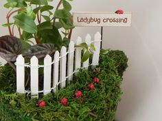 Hey, I found this really awesome Etsy listing at https://www.etsy.com/listing/210293563/one-fairy-garden-miniature-lady-bug-with