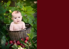 6 month photo ideas- baby apples