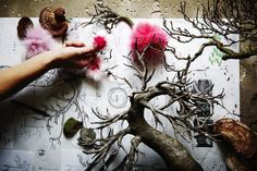 AMKK(東 信、花樹研究所) » Botanical installation for FENDI