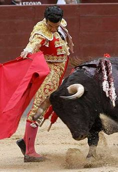 bullfight in Spain.. Only 2 more weeks!
