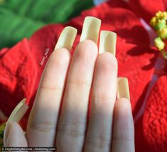 Laxmi Nails - Nailslong.com