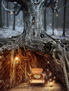 Toad In The Hole by Louise Wells, a lovely image that reminds me of Leshma's tree in my first book Revealing Rexa. Of course, Leshma lives in the desert and he's not a toad, he's a goblin, but you get the idea...