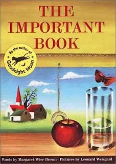 Littlest Learners / Clutter-Free Classroom Blog: The Important Book - a great writing activity