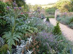 Penelope Hobhouse | The Enduring Gardener