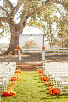 Fall Ceremony with pumpkins, fall leaves, flowers and Arbor Rental with Fabric at Santa Margarita Ranch. Paso Robles Wedding