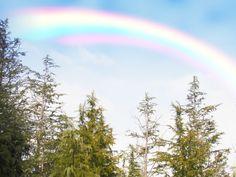 凄いすごい凄い〜〜!!虹の根元ってこうなってるの〜?!