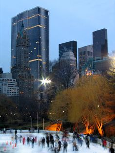 Central Park Skating, New York City Copyright: Philippe Duchesne