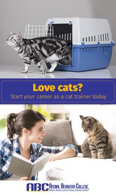 Are you a cat lover? You can turn your love for cats into a cat-training career at Animal Behavior College. Our Cat Training Program combines an online course with shelter experience. Every student will have the opportunity to observe and handle cats of different breeds at a local animal shelter. Be the first in your area to become an ABC Certified Cat Trainer (ABCCT) at animalbehaviorcollege.com