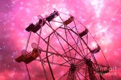 hot pink images - Google Search