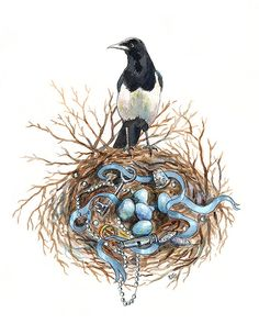 Watercolour print of magpie and nest  8.5 x by GetTheeToANunnery, $15.00