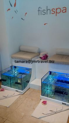 The Fish Spa treatment is a pioneer in the world and Wellness Therapy using auth. The Fish Spa treatment is a pioneer in the world and Wellness Therapy using authentic Garra Rufa fish, also k Fish Pedicure, Fisher, Nail Salon Design, Honeymoon Places, Layers Of Skin, Wellness, Garra, Diy Spa, Romantic Getaways