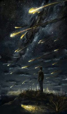 meteor shower / skyscape / space nerds