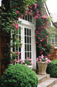 Climbing roses frame the entrance of a cedar shake cottage.