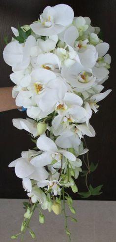 Bridal Cascade Bouquet Orchids & Ivy TFM-WB462