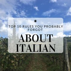 This post details ten different aspects of Italian grammar that many people often forget. It talks about the trapassato prossimo tense, using fare, avere, and articles with possession. Italian Grammar, Italian Vocabulary, Italian Phrases, Italian Words, Italian Quotes, Italian Language, Foreign Language, Basic Italian, Learn To Speak Italian