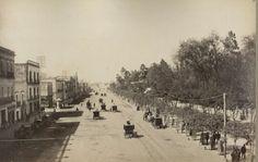 Av. Juárez. Alameda de México. Abel Briquet. s. XIX