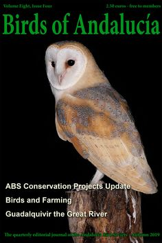 'Birds of Andalucía' Autumn Edition now being sent to members. Bird Guides, Information About Birds, Andalucia, Months In A Year, Bird Watching, Conservation, Autumn, Fall, Canning