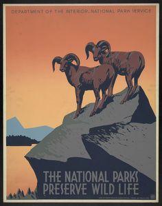 National Wildlife and Parks Reserve. #retro #design