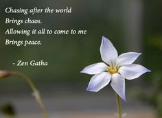 Chasing after the world brings chaos - Allowing it all to come to me brings peace. Zen Gatha