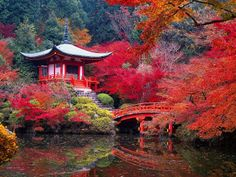 The famous moss garden at Saiho-ji in Kyoto, Japan