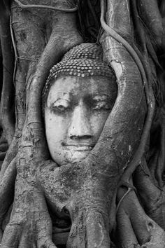 Un portrait de bouda au temple de Wat Ratchaburana a ayutthaya en noir et blanc