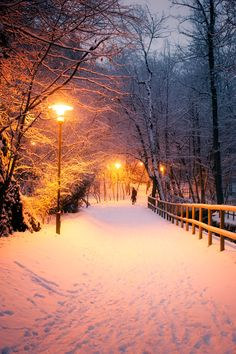 Able to adapt to all kinds of weather. Suitable for installation in public transport, parks, schools, hospitals, residential areas and other scenes. Fantasy Landscape, Winter Pictures, Cool Pictures, Winter Photography, Nature Photography, Winter Wallpaper, Winter Love, Winter Scenery, Snow