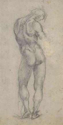 The Athenaeum - Study of the Nude (Luca Signorelli - )