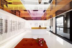 Optique Potts Point