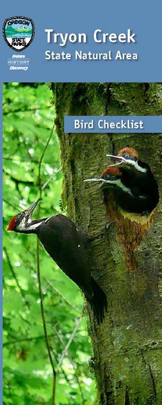 Tryon Creek State Natural Area bird checklist, by the Oregon State Parks and Recreation Department