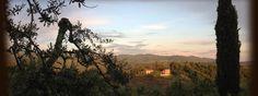 Tuscany, Italy Luxury Rentals | Villa Vertine | Cuvee Escapes