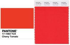 PANTONE 17-1563 Cherry Tomato
