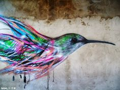 Las aves de grafiti de L7M El artista brasileño Luis Seven Martins, conocido como L7M, ha realizado recientemente en la ciudad de São Paulo...