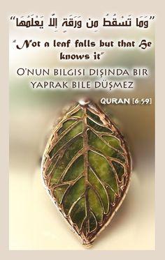 #leave #green #Turkish #Quran #Share_Quran_Everywhere #Islam #Muslim #Muslims #Quran_verse #Quran_verses #Islamic #asyiahsamy #Colores #Islamic_photos #Arabic #English #Quran #asyiah_samy #القران_الكريم #القران #الاسلام #مسلم #ايات @asyiah_samy