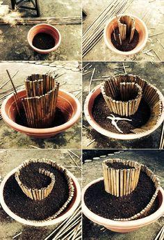 herb spiral in a pot
