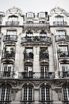 Image result for haussmann facade