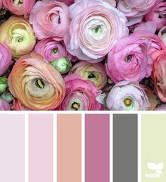 Flora Hues - http://design-seeds.com/home/entry/flora-hues102