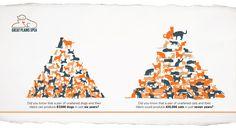 WorldSpayNeuter-Day-_pyramids-graphic