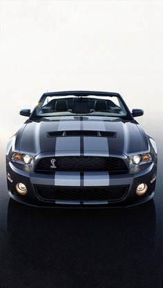 Cool Stuff We Like Here @ CoolPile.com ------- << Original Comment >> ------- Mustang Shelby Cobra GT500