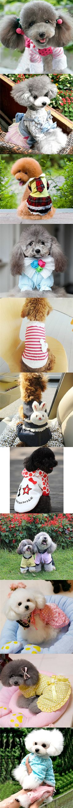 Dog clothes and accessories _ for the pampered pooch... TOO adorable for words! Posted by Redlandspoodles.com