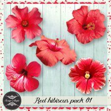 Elements - red hibiscus vol 01 - Scrap Angie #CUdigitals cudigitals.comcu commercialdigitalscrapscrapbookgraphics