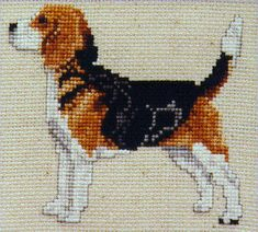 Beagle Kit - Full Body - Pegasus Originals