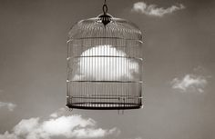 Chema Madoz - photo - fotografia