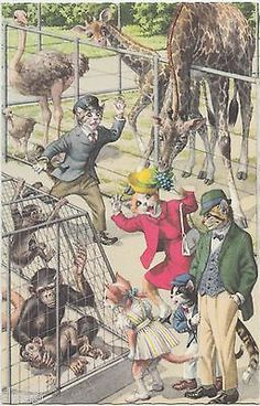 Alfred Mainzer DRESSED CATS Postcard Belgium Comic #4974 ZOO Giraffe Monkey