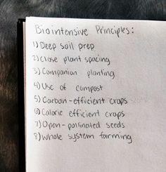 The 8 Biointensive Principles