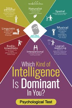 Intelligence has always been a controversial subject. Find out your dominant intelligence type. Which Intelligence Is Your Most Dominant? Fun Personality Quizzes, Personality Psychology, Types Of Intelligence, Fun Test, Mind Games, Human Behavior, Life Skills, Psycho Facts, How To Find Out