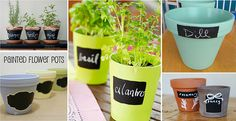 It's no secret that we love chalk markers here at Crafty Croc and our chalkboard labels are a fantastic addition to this addiction. Not only do they look great but you can erase the markers and rewrite and you can re position them so a packet of Mint Paint, Painted Flower Pots, Chalkboard Labels, Chalk Markers, Garden Markers, Organize Your Life, Terracotta Pots, Terra Cotta, Pansies
