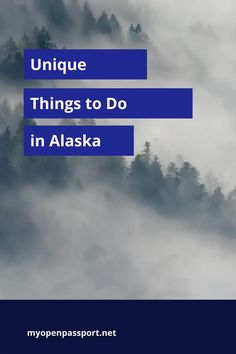Interested in going to Alaska? Not sure what to do there? Check out this article on unique things to do in Alaska, USA! #travelingalaska #alaska #discoveralaska #usa