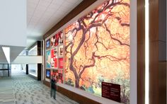 Astellas Pharma US Discovery Walls - XibitzXibitz Lobby Interior, Experiential, Higher Education, Discovery, Health Care, Projects, Statistics, Multimedia, Liberty