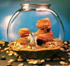 The Wonder Room, a series of miniature creations designed by Tony Larson, who imagines some highly detailed scenes in aquariums, terrariums and other glass containers. Star Wars Birthday, Star Wars Party, Terrariums, Diy Terrarium, Aquariums, Star Wars Crafts, Star Wars Wedding, Creation Deco, Geek Decor