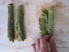 Preserved Grape Leaves Recipe
